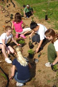 Environmental Concern-Schoolyard Habitat-Support