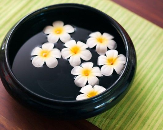 Water Bowl Decoration Simple Frangipanis In A Water Bowl  Frangipanis  Pinterest  Decorating Decorating Design