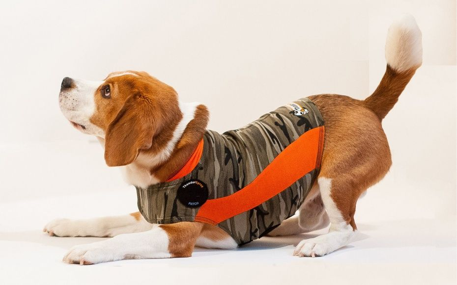 Thundershirt - 13 Travel Pet Accessories Worthy of Your Dog | Travel + Leisure