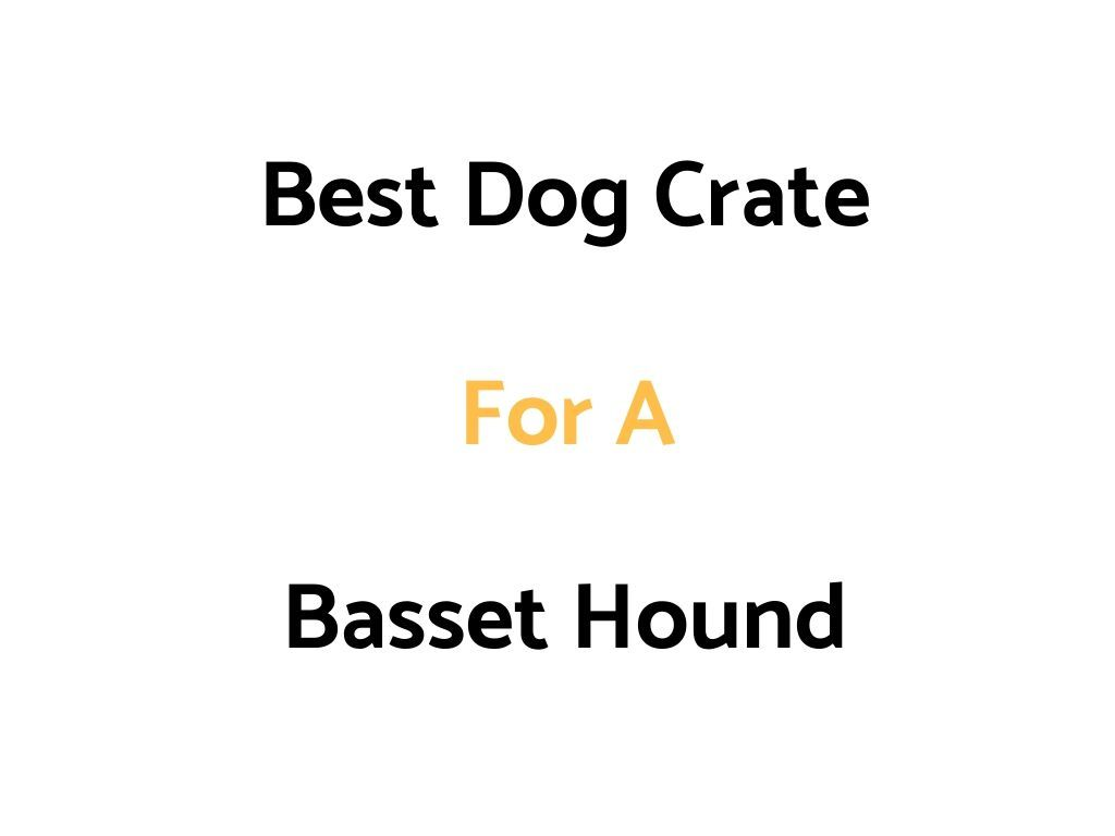 Best Dog Crate For A Basset Hound Top Crates Amp Buyer S