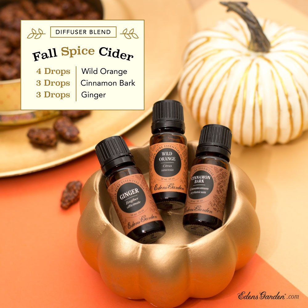 Blends To Fall Ginger essential oil, Edens