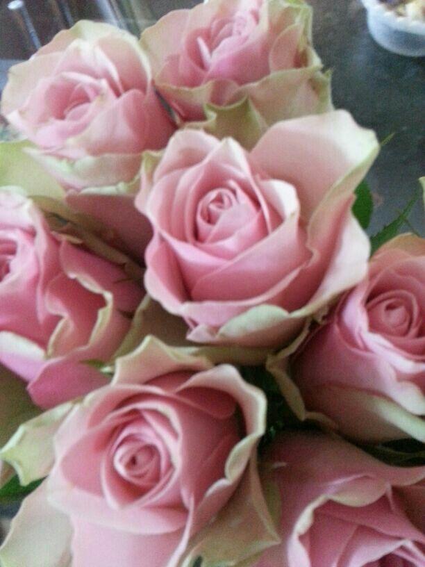 Lieve bloemen!