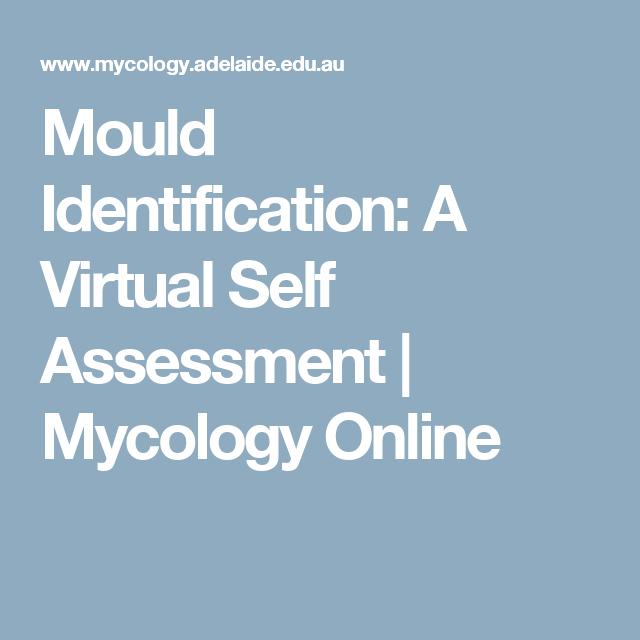 Mould Identification: A Virtual Self Assessment | Mycology