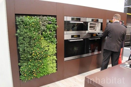 miele eco walls ecowalls kitchen herb garden green wall edible greens - In House Herb Garden