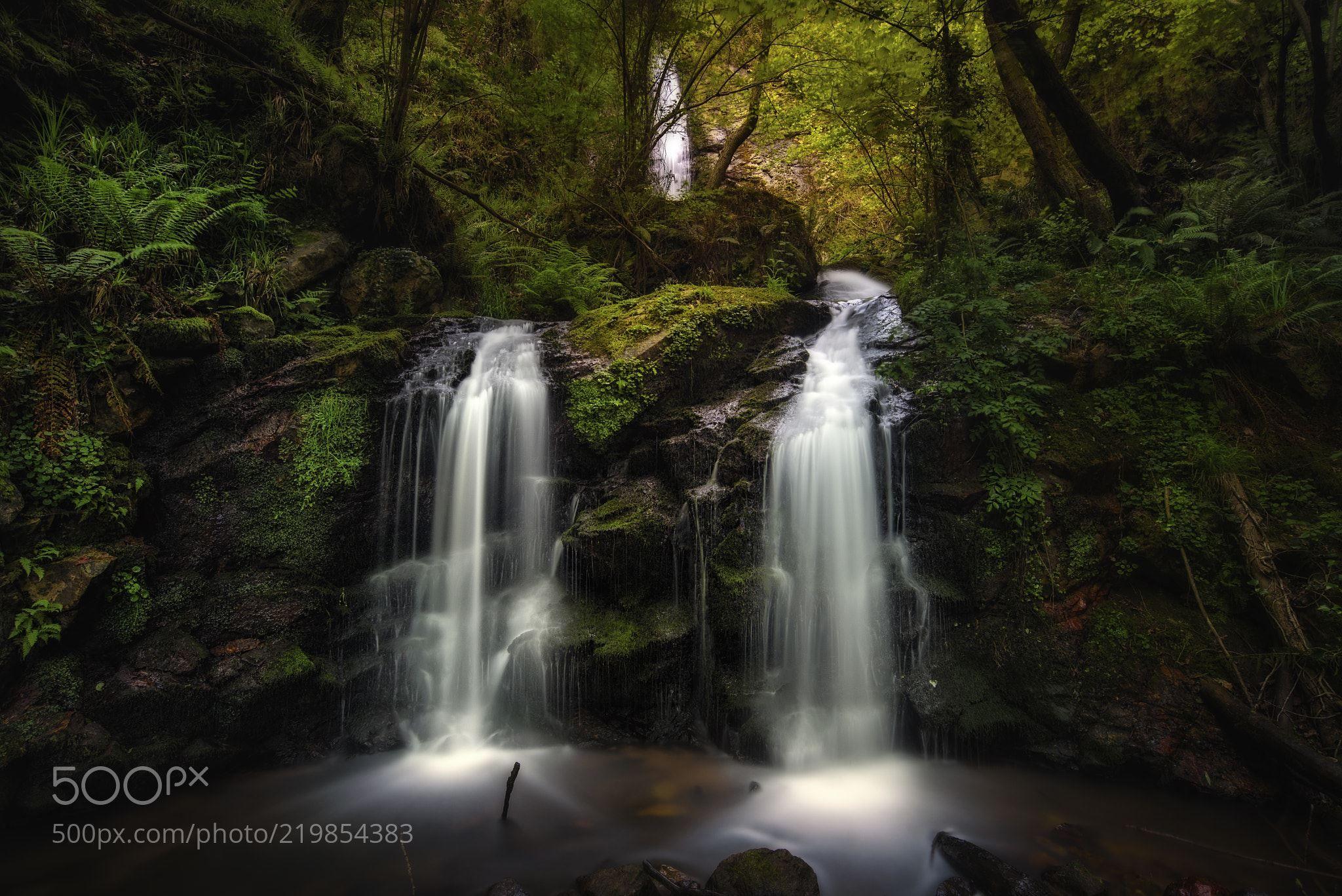водопад художественное фото карантина всех