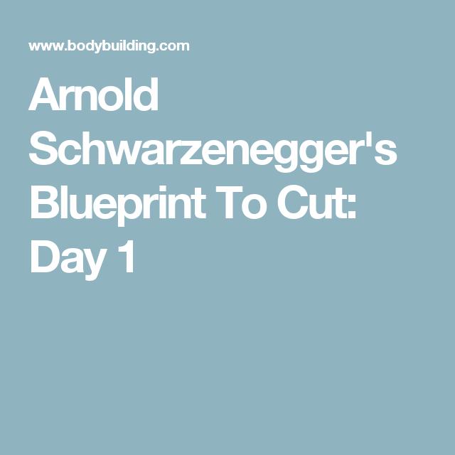 Arnold Schwarzeneggeru0027s Blueprint To Cut: Day 1
