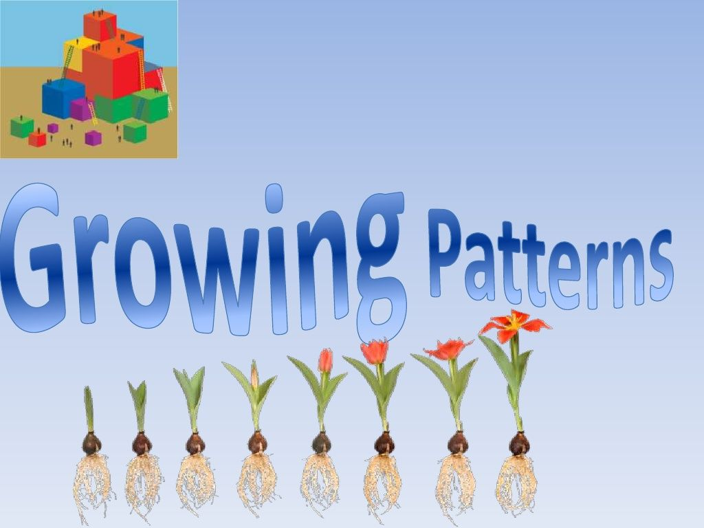 growing patterns by traci garcia via slideshare grade 2 patterning 1st grade math second. Black Bedroom Furniture Sets. Home Design Ideas