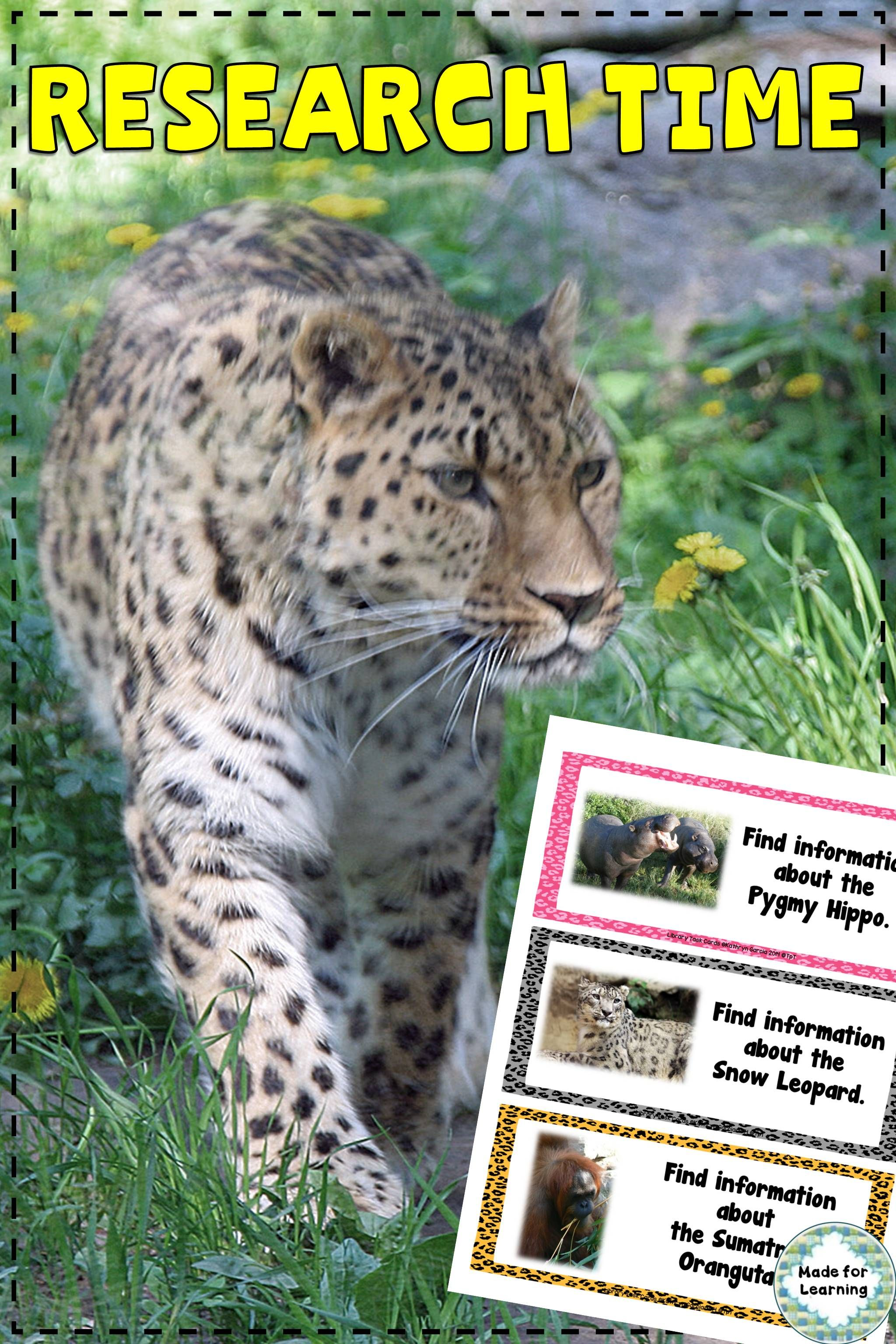 Endangered Animals Library Research Task Cards
