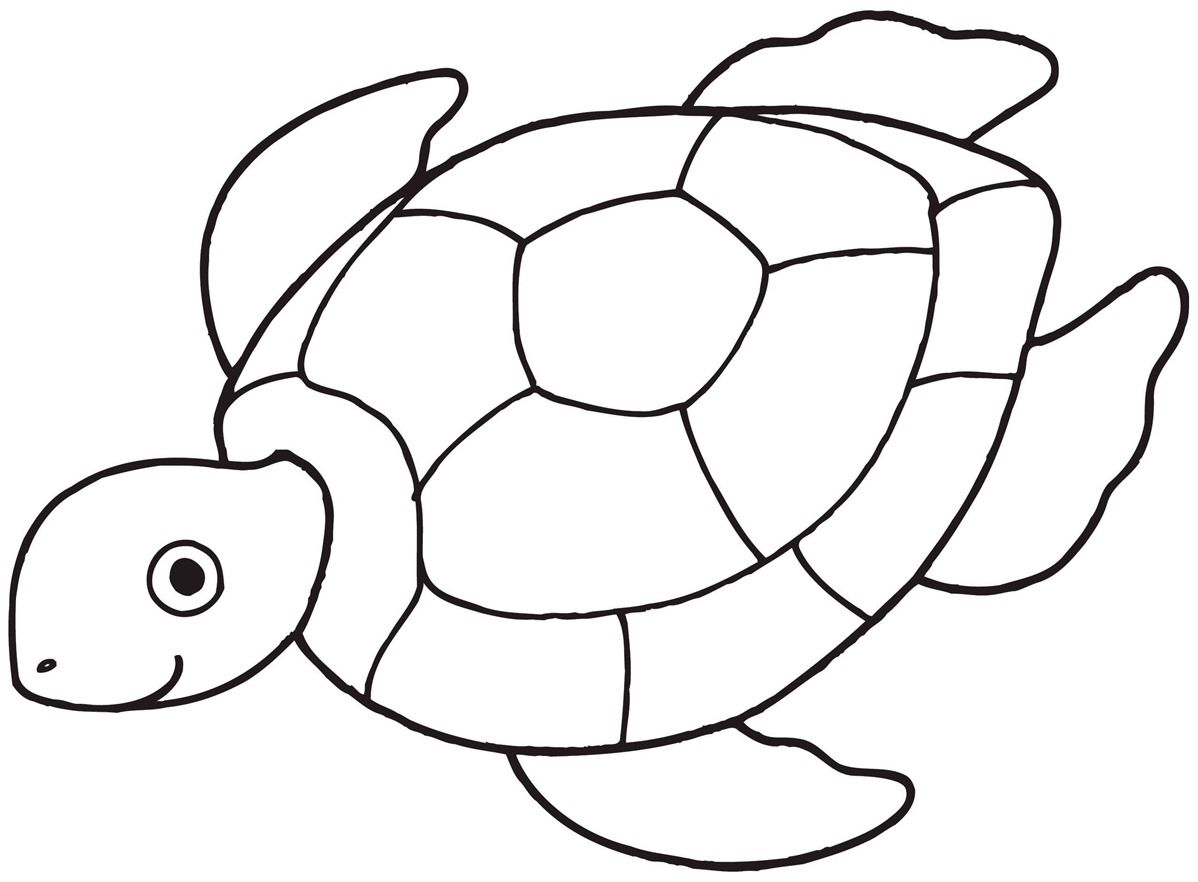 Turtle Line Drawing Turtle Coloring Pages Turtle Drawing Sea Turtle Drawing
