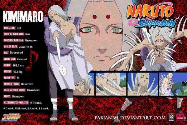 Naruto Shippuden Characters Profile
