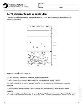 Perfil Y Horizontes De Un Suelo Ideal Stem Projects Soil Layers Lapbook