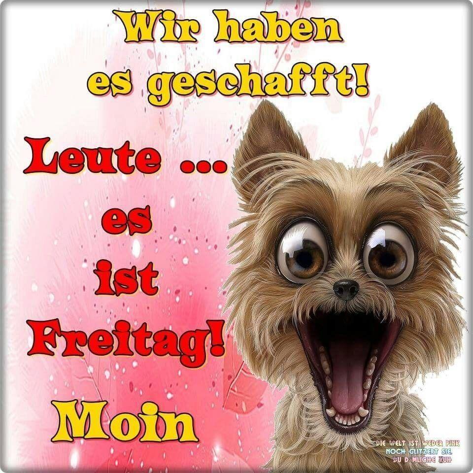 Pin Von Rolf Bohringer Auf Happy Fryday Freitag Lustig