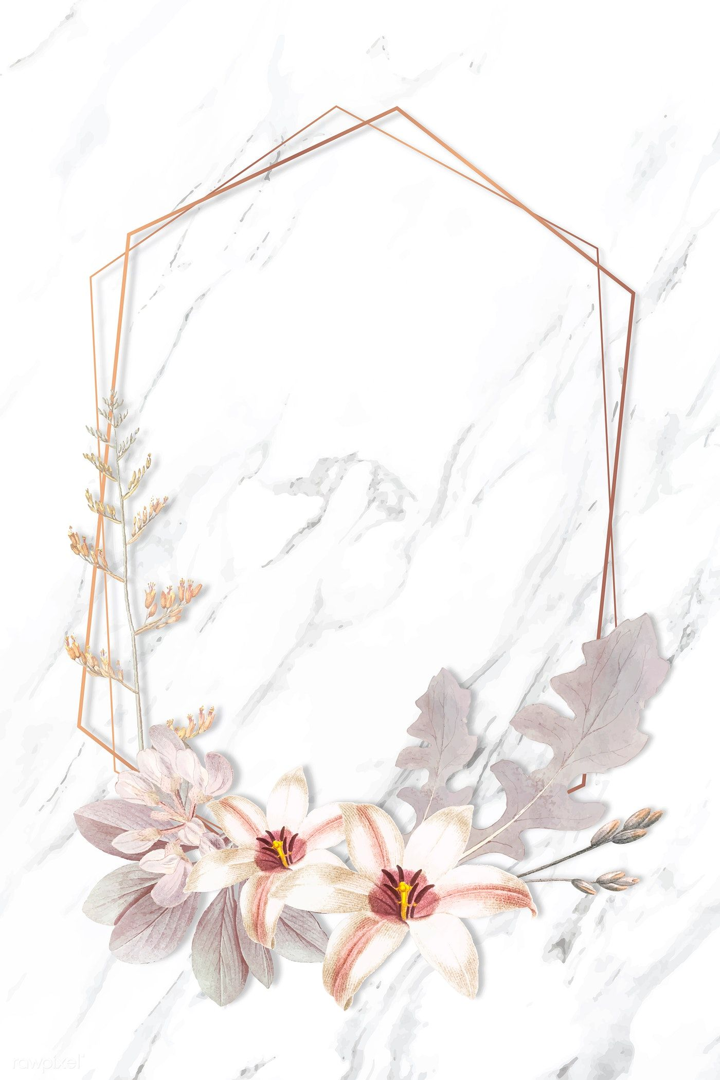 Download premium vector of Frame with lily and New Zealand flax background vector by Sasi about beige pink flower, plants new zealand, Flower frame hexagonal, new zealand, and arctotis amoena 1213615