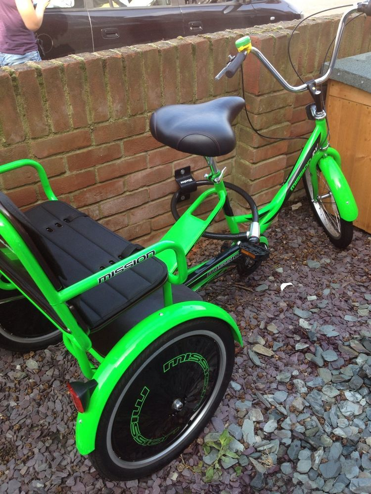 Details about Trike Adult Bike With Two Child Seats