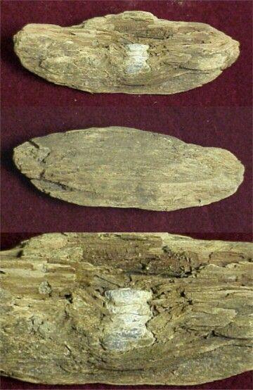 "Carbine Bullet in Wood. Wood piece measures 3.5"" x 1.25"" x .75""."