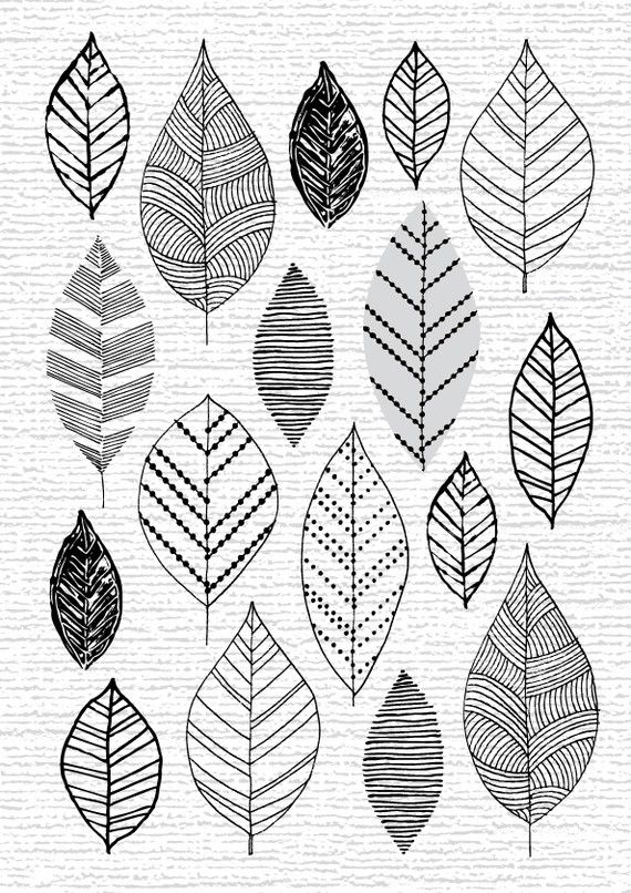 Eloise Renouf 1950s Style Leaf And Flower Prints Leaf Drawing Doodle Art Prints