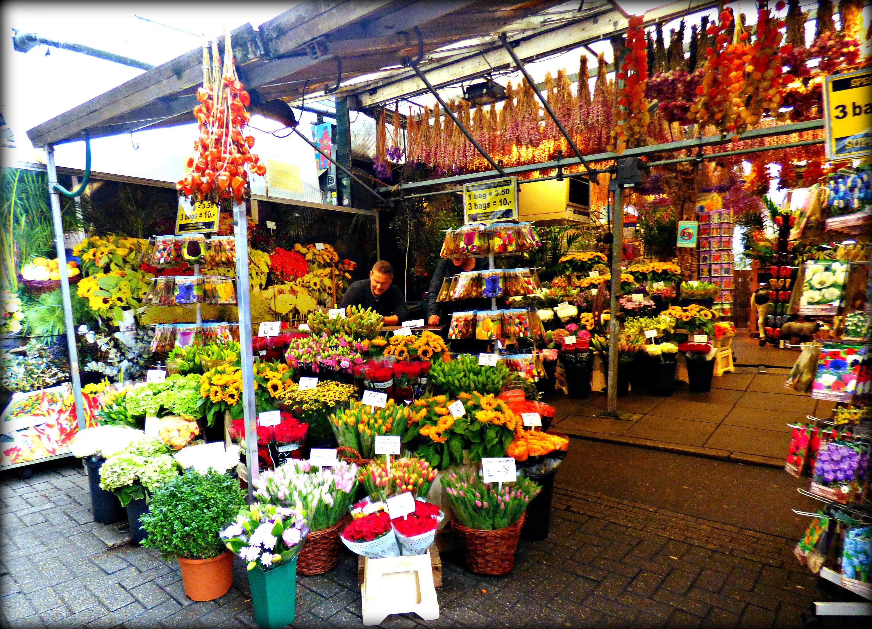 Bloemenmarkt Amsterdam Jon Lander ©2016 can't really