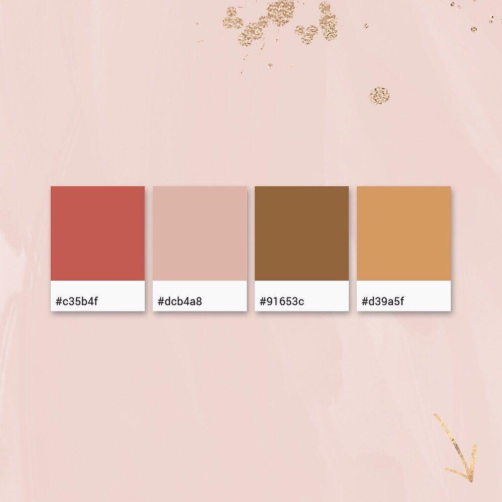 Branding Grafik Sabine On Instagram Farbkombination Zur Inspiration Zum Abspeichern Braun Muss Nicht Unsexy Farbkombination Inspiration Farben