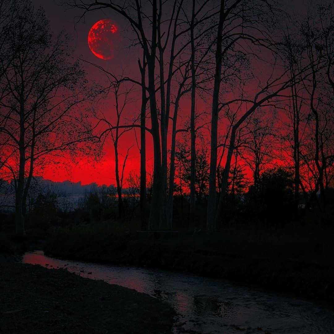 Pin By Jack Bennett On Places In 2020 Dark Red Wallpaper Dark Red Background Sky Aesthetic