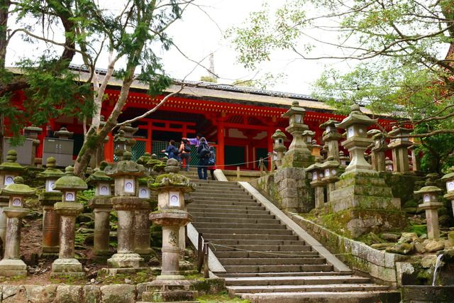 Kasuga-taisha Shrine | Nara | Japan Hoppers - Japan Travel Guide