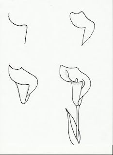 How To Draw Flowers Calla Lily Art Lesson Drawing Page Early Finishers