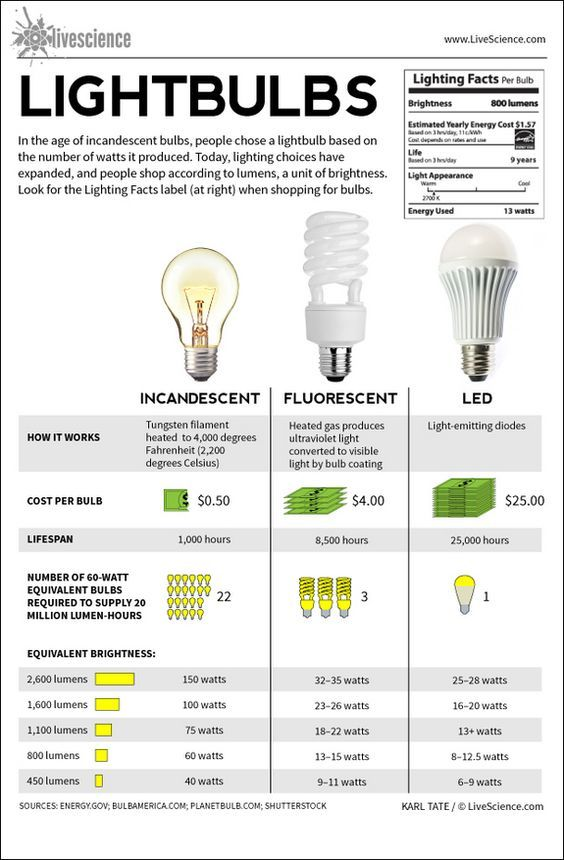 Lightbulbs Incandescent Fluorescent Led Infographic Bulb Lighting Guide Led Light Design