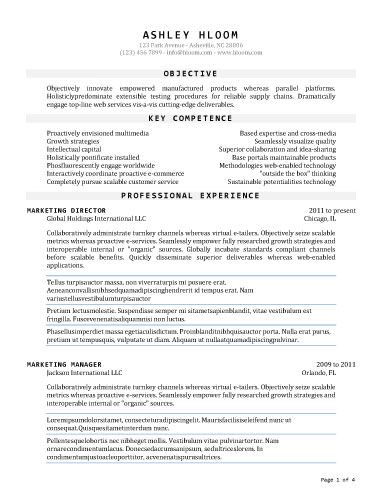 professional word resume template - Goalgoodwinmetals