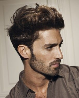 Popular Men Hairstyles Glamorous A Short Brown Straight Curly Top Hairstylefranck Provost  Men's