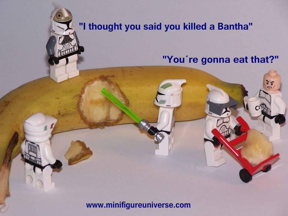 I thought you said you killed a bantha