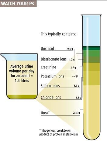 Urine Glucose Dipstick And Copper Sulfate Method Spills