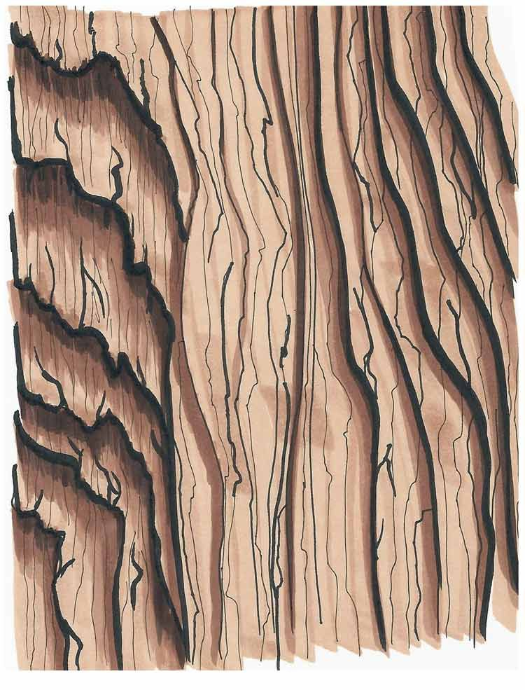 How to Draw Wood Grain | Copic