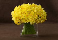 Stunning simple citrus bouquet #BelleFleurNY