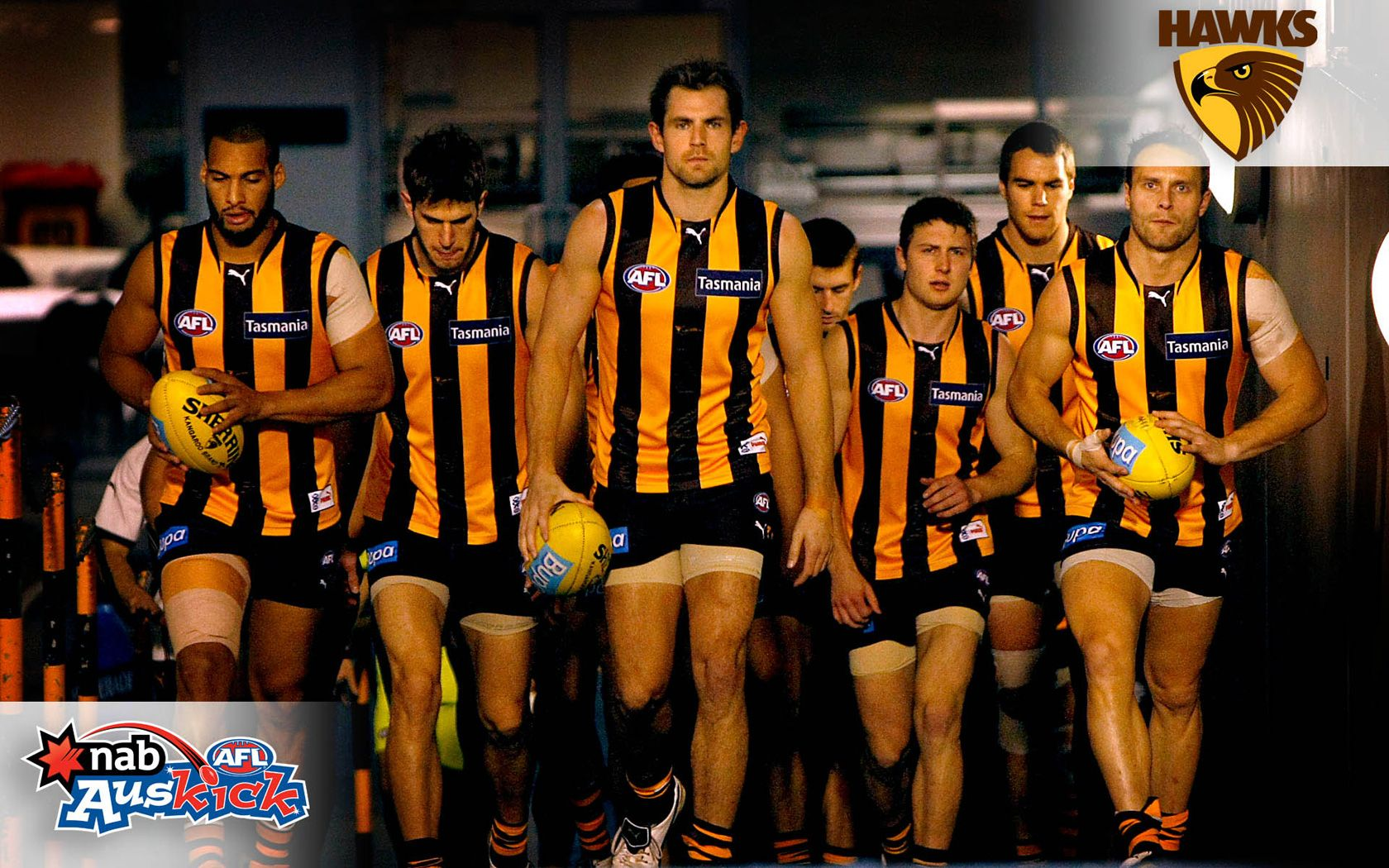 Hawthorn Football Club ( GO HAWKS )