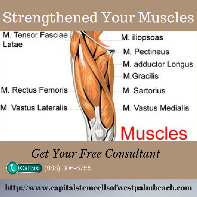 Here Is The Best Treatment Of Stem Cells If You Think Your Muscles