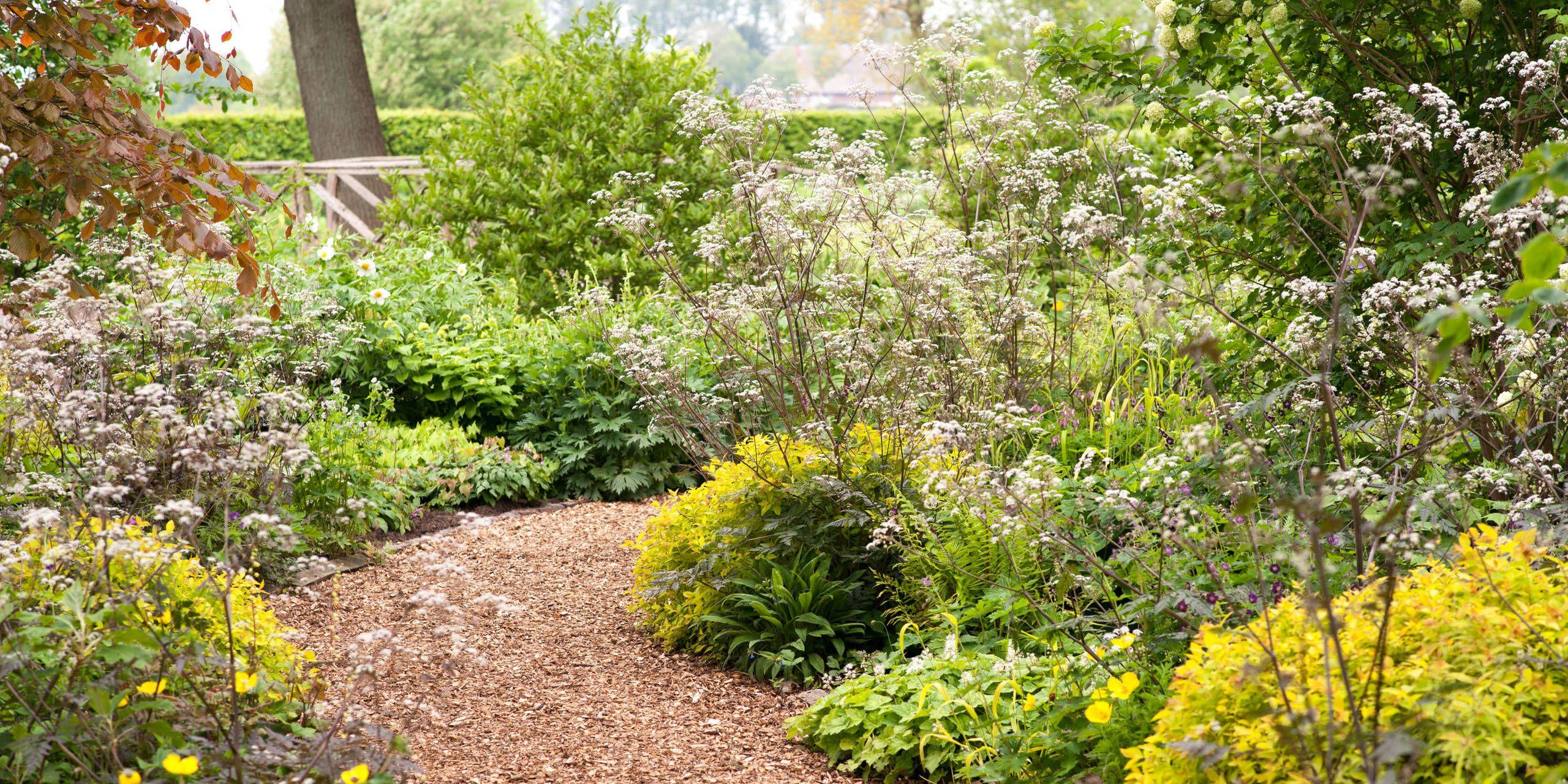 Garten Moorriem Bilder Besuchergarten Und Gärtnerei Bei