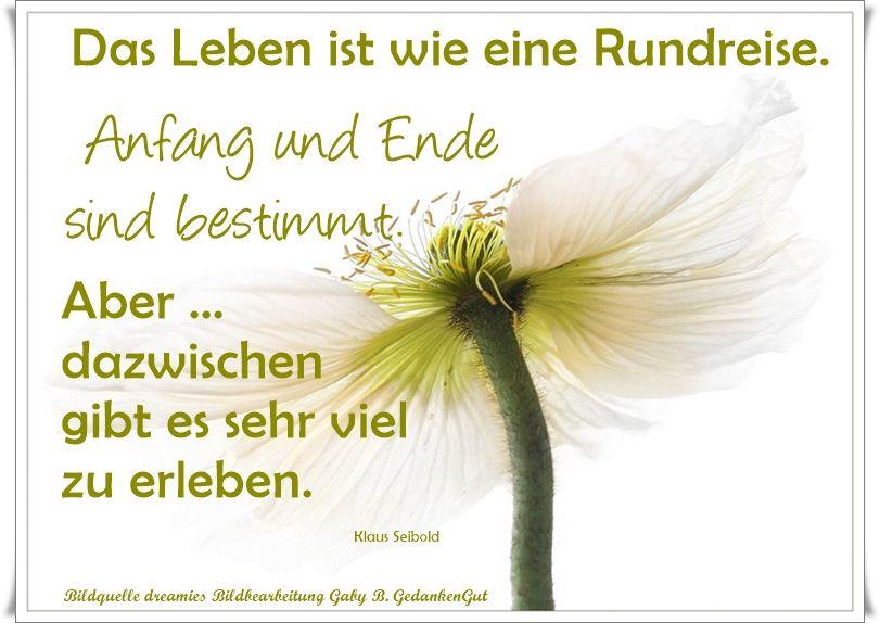 Pin Von Heinrich Thoben Auf Gedankengut Lebensweisheiten Spruche Spruche Neuer Job Spruche