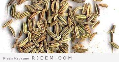 فوائد الشمر للتخسيس مجلة رجيم Food Almond