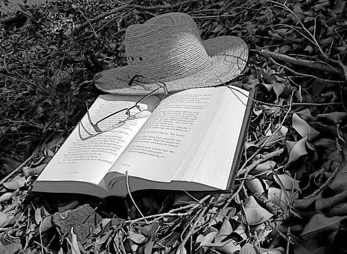 libros y tiempo