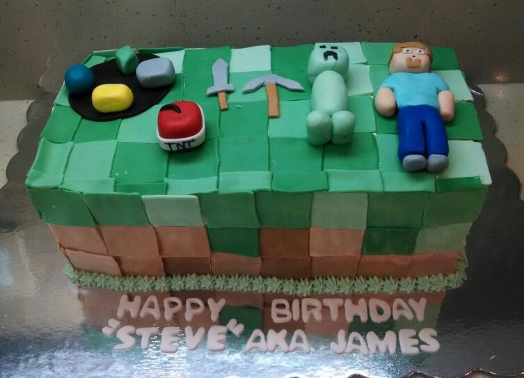 Happy birthday james we put iron diamond emerald and gold on his happy birthday james we put iron diamond emerald and gold on his cake as well as a few weapons tnt creeper and steve half chocolate cake with vanilla thecheapjerseys Images