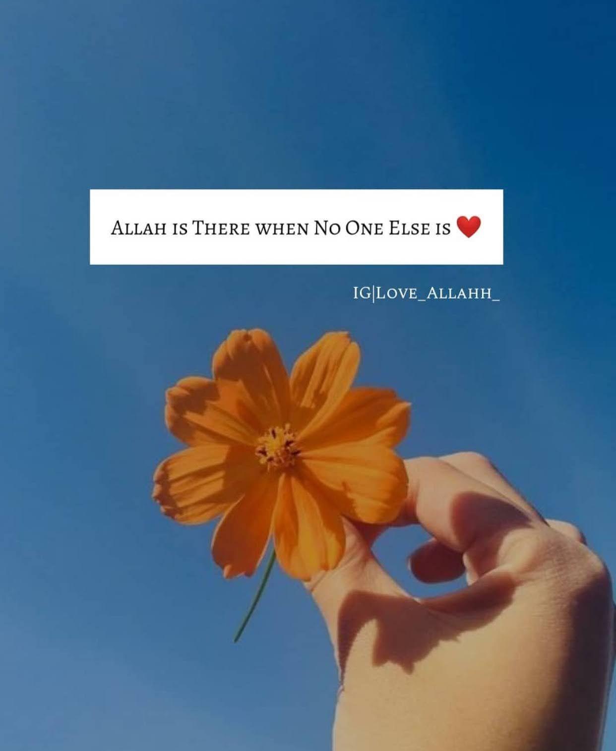 Schöne islamische Zitate für Frauen in 3  Woman quotes