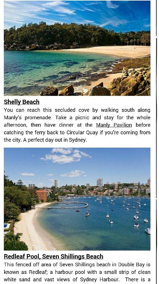 Shelly beach and red leaf beach ... sydney nsw