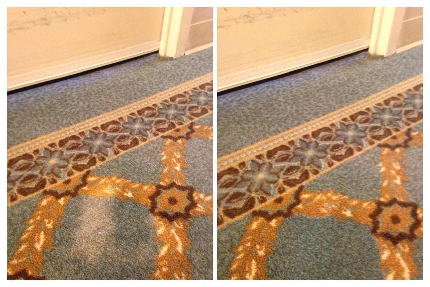 Bleach spot repair louisville ky cheap carpet carpet