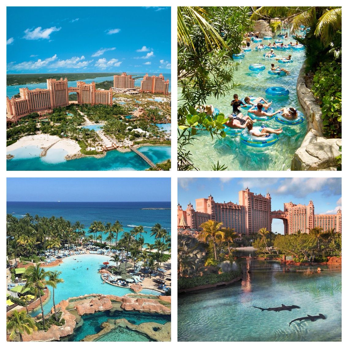 atlantis bahamas! august 2015! | vacation ideas in 2018 | pinterest