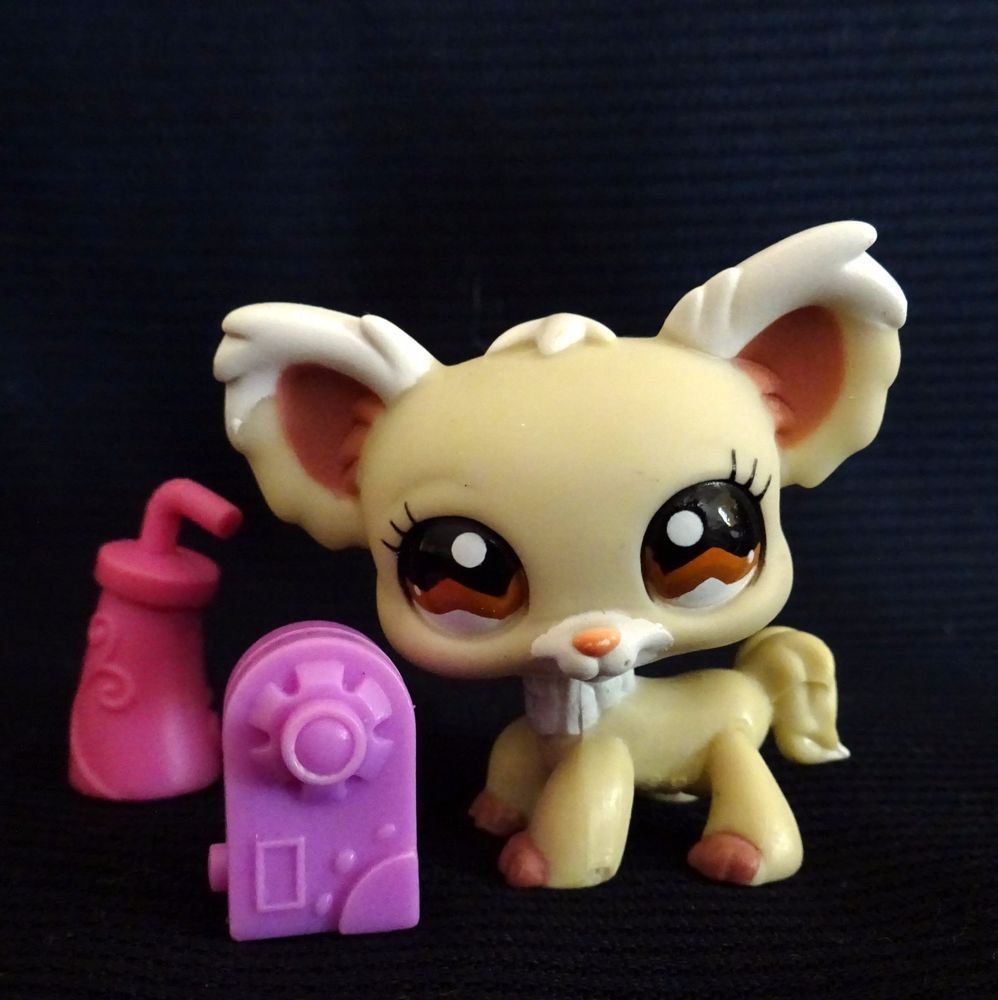 Littlest Pet Shop 1199 Chihuahua Dog Lps Toy Hasbro 2007 Cream