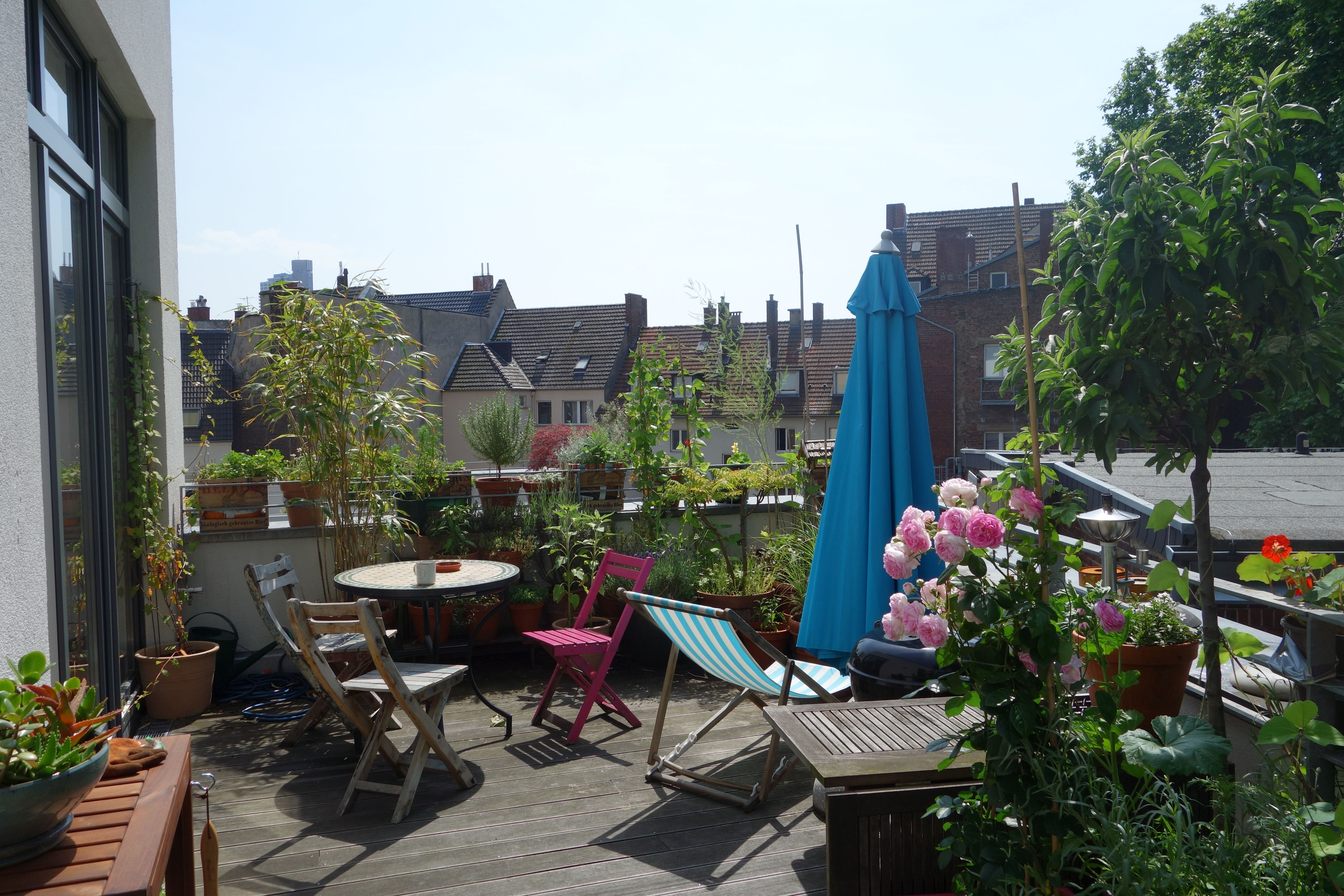 Dachterrasse, Balkon, Begrünung | Gardening Ideas | Pinterest ...