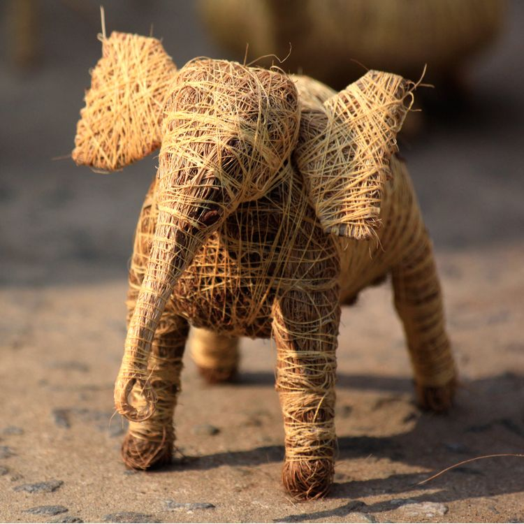 Craft - Coir craft from Assam, India.