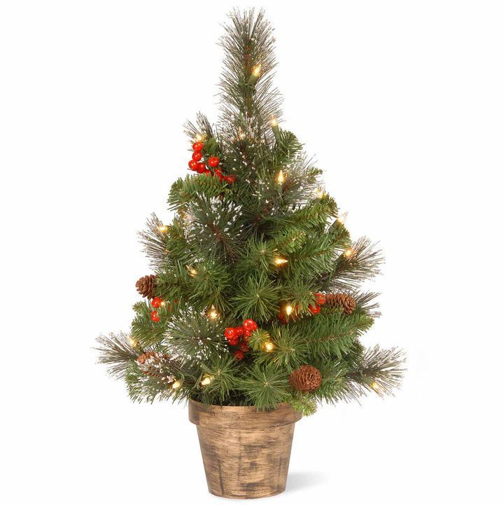 national tree co 2 foot crestwood small pre lit christmas tree pre lit christmas tree lighted christmas trees and christmas tree - Small Lit Christmas Tree