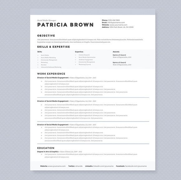 Resume Templates For It Professionals Professional Resume Template  Cover Letter For Ms Word  Modern