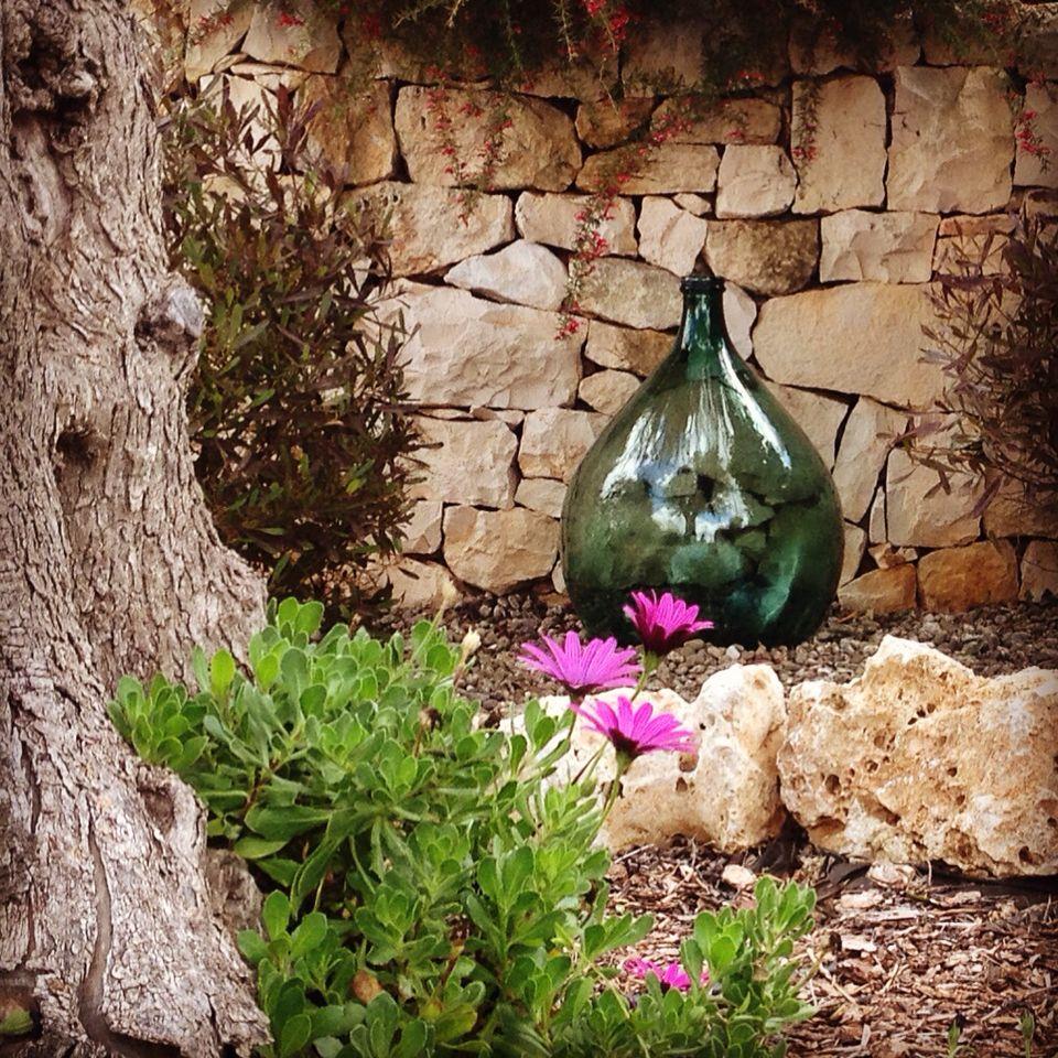 giardino #hobby #love #fiori #tuttofiorito #primavera #noci