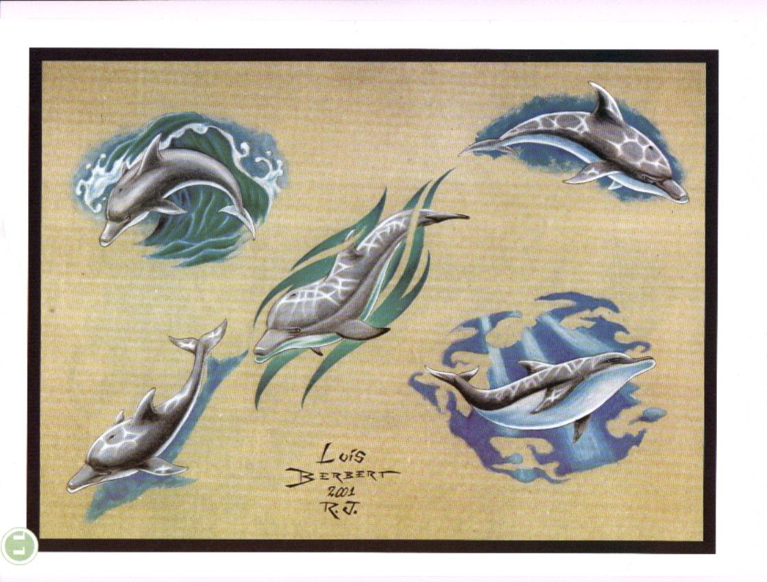 Pics photos dolphin tattoo design tattoos art and designs - Dolphin Tatoos Com Dolphin Tattoos Free Tattoo Ideas Free Download Tattoo 7329
